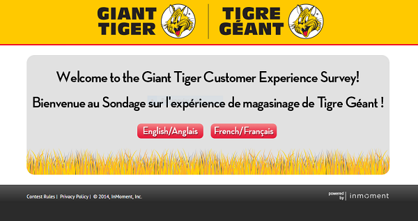 giant tiger survey screenshot