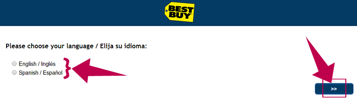 Best Buy Survey Step 1