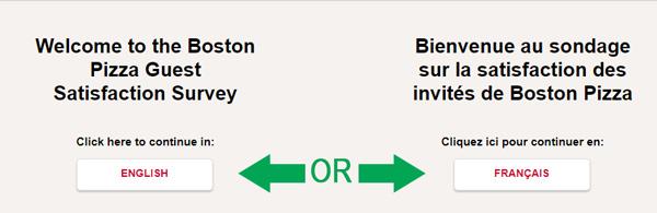 survey language selection