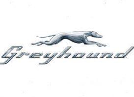 Greyhound Survey at www.greyhoundsurvey.com